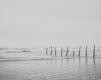 Ocean Wood Posts, Beach Wood Pillars, Seaside PIer, Galveston Texas, Beach Photograph, Beach Seaside Photo Boardwalk, Water Art Seaside Bird