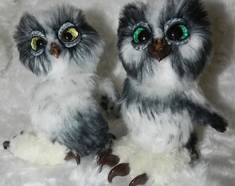 The Chicks of the snowy owl
