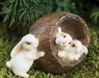 Fairy Garden  - Bunnies Walnut - Miniature