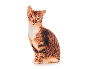 Tabby Cat, Tabby Cat Cushion, Nursery Decor, Tabby Cat Design, Cat Lover, Cat Pillow, Cats, Girls Birthday, Baby's Birthday, Kids Decor