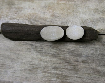 Pebble Stud Earrings with Driftwood Display - Gift for Her - Baltic Sea Beach Stones - Minimalist