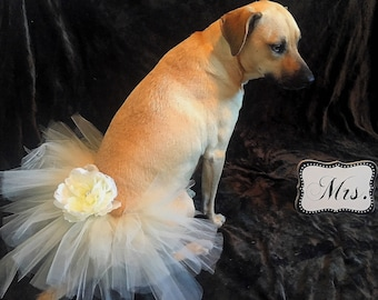 Flower girl,Ivory, Dog Tutu, Pet Dress, Dog Skirt,Dog Dress, Dog Wedding,Pet Wedding, tutu, dog tutu, dog wedding dress, Ivory wedding