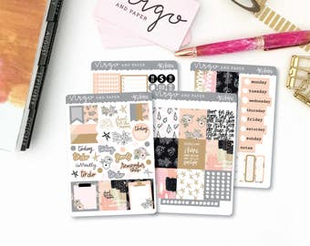 Horizontal Kit - Shine Collection - Planner Sticker Kit - Weekly Hand Drawn Floral Neutral Sticker Kit - Glossy, Matte SHKH