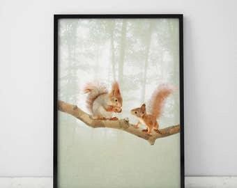 Woodland Animal Squirrel Nursery Woodland Squirrel Nursery Woodland Wall Art Print Nursery Print Animal Print Nursery Print Forest Animals