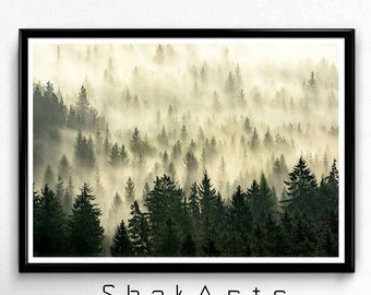 Modern Contemporary Abstract Wall Art, Forest Woodlands Wall Art, Winter Wonderland Decor, Tree Branches Print, Modern Photography, Forests