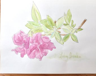 Watercolor Flowers Painting, Pink Azalea Flowers Watercolor Painting