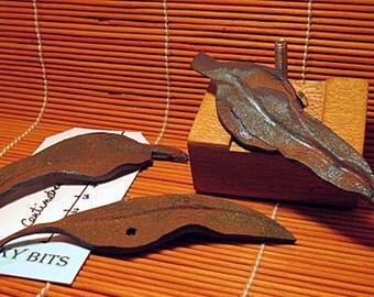 Brooch. Leaf brooches. Rusty gum leaf brooches.
