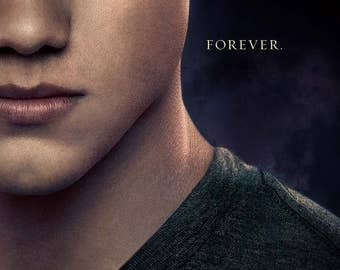 "Twilight Breaking Dawn Part 2 ""C"" 11.5x17 Promo Movie POSTER"