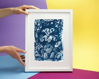 Coral Reef Drawing by  Ernst Haeckel, Cyanotype Print on Watercolor Paper, A4 size