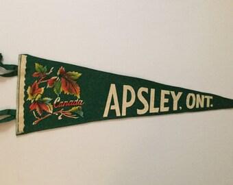 Apsley, Ontario, Canada - Vintage Pennant