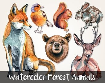 6 Watercolor Animals / Digital PNG Clipart Graphics / Fox, Bird, Squirrel, Rabbit, Bear, Deer / for personal and commercial use