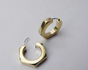Nut earrings with silver hook
