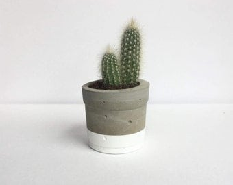 Mini White Concrete Pot with Cactus