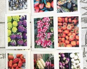 """A Set of 8 3"""" x 5"""" Limited Edition Farmers Market Photo Blank Thank You Cards"""