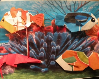 Origami fish and frame