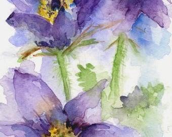 Watercolor Pasque Flowers, Purple Flower Art, Pasque Flower Decor