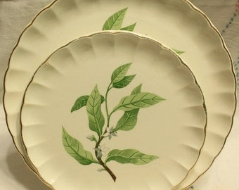 W. S. George China Green Valley Mid Century Table 4 Dinner Plates 4 Salad Plates Floral Vintage China