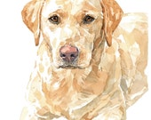 Yellow Lab Watercolor Limited Edition Print, labrador retriever painting 8x10