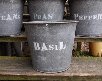 Vintage metal Bucket BASIL planting  galvanized pails Rustic Barn Garden plant herb bucket Planters Storage Industrial Cottage