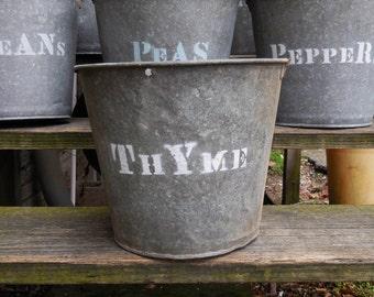 Vintage metal Bucket THYME planting  galvanized pails Rustic Barn Garden plant herb bucket Planters Storage Industrial Cottage