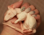 Adopt a Rat ! - Ball Jointed Rat Doll - Painted