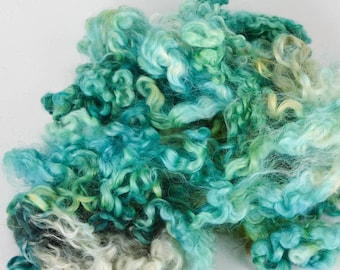 Wensleydale Long Wool Locks for Spinning and Felting Fiber- Fiction