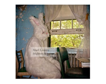 Creepy White Rabbit Costume 5x5 Inch Photography Print, Weird Small Wall Art, Easter Bunny