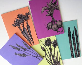Pack of greeting cards garden notecards