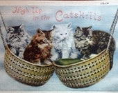 High Up In The Catskills--Vintage Kitty Post Card
