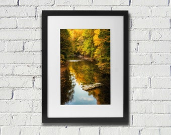 Wissahickon Park In The Fall - Photograph of Wissahickon park Trees and Creek in Autumn in Philadelphia Fine Art Print