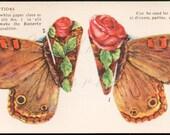 Assemble California Buckeye Butterfly Antique Trade Card Cut Out and Burlington Iowa