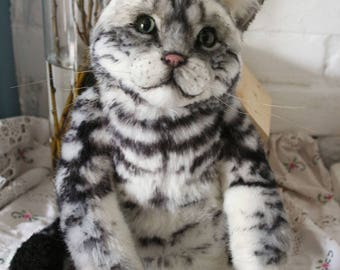 Cat portrait. American Shorthair Cat.Cat Portrait. 18 In Teddy cat. Artist teddy bears. Pet portraits. Pets. Animalistic gifts. OOAK