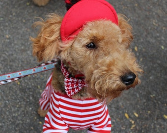 Red and White Doggie PomPom Hat
