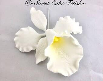 Cattleya Orchid Flower Cake topper Sugar Flower Cake topper Gum paste flower cake topper Flower topper Gumpaste White Orchid cake topper