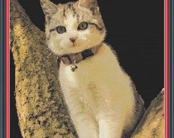 Tree Kitten PDF Cross Stitch Pattern