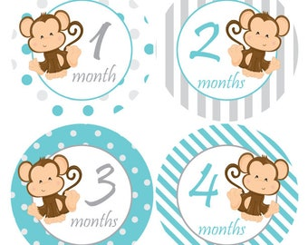 Boy Month Stickers, Monkey stickers, Baby monthly stickers, Baby Shower gift, Boy Growth stickers, Newborn photo prop, Grey Teal Monkey A227