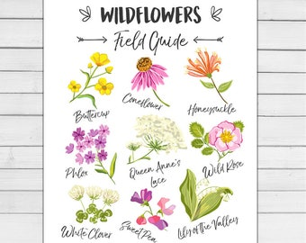 Wildflower Field Guide Wild flower Nursery Floral art wall decal Flowers Nursery decor Wildflowers Spring Digital PRINTABLE download 8x10