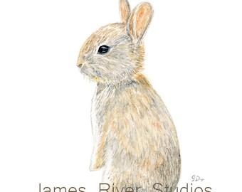 Bunny Nursery Art Bunny Painting Bunny Print Bunny Art Baby Bunny Rabbit Nursery Painting Nursery Print Nursery Decor Boy Room Girl Room Art