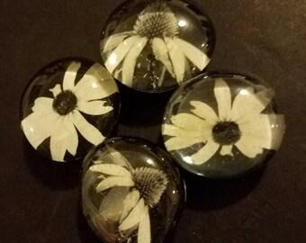 Set of 4 strong glass black and white flower magnets, refrigerator magnets, fridge magnets, kitchen decor, black flowers, floral