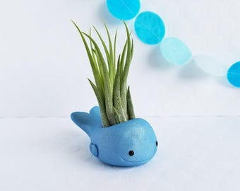 Blue Whale Air Plant Holder, Air Planter, Air Plant Holder, Best of Summer, Gift for Her, Planter, Hostess Gift, Gift Women, Desk Accessory