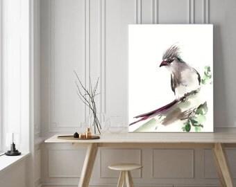 Art Print of Bird,  Blue Naped Mouse Bird, Watercolor Painting Art Print, Bird Watercolour Wall Art, bird poster