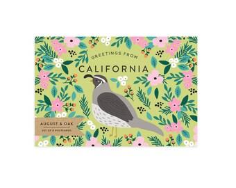 California State Bird Postcard - Set of 8