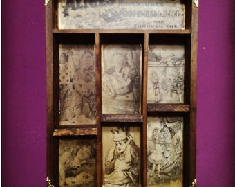 Alice Cabinet of curiosities