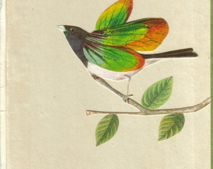 Colorful Butterfly Bird Artwork, Original Art Collage