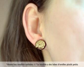 Brain wood earring studs.-- wood brain earrings, brain earring studs, brain stud earrings, HYPOALLERGENIC brain earring studs, wood brains