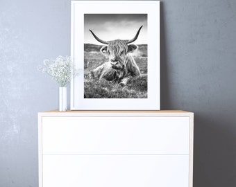 Cow poster - Printable Instant Download - Cow Wall Art - Scandinavian Poster - Cow Photo - black and white Photography - Animal Photography