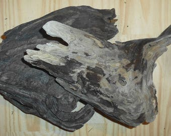 Driftwood Large Unique and interesting pieces