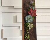 Succulent art/plant art/succulents/succulent planter/succulent arrangement/reclaimd wood/rustic decor/burnt wood/wood art/planter/air plant