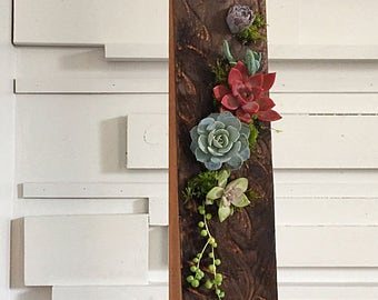 Succulent art/plant art/succulents/succulent planter/succulent arrangement/reclaimd wood/rustic decor/burnt wood/wood art/planter/air plant