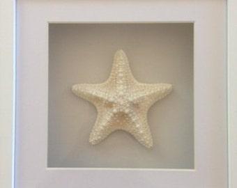 Starfish Shadow Box Frame